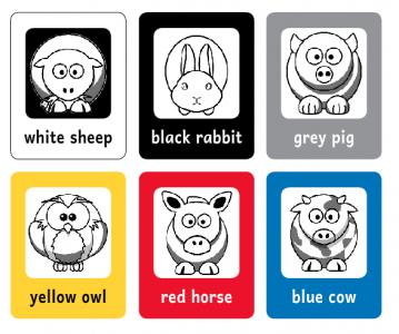 bingo couleurs pets