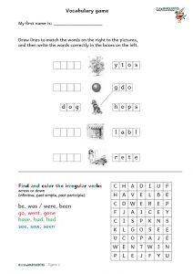 tigers words & irregulars verbs 2